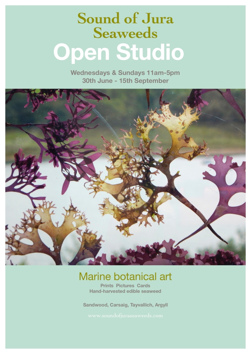 Open Studio poster copy 3